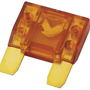 Car audio maxi blade-type fuse 20 A Sinuslive M20 1 pc(s)