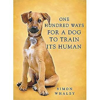 Hundert Wege für einen Hund seinen Menschen zu trainieren