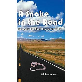 A Snake in the Road A different take on the U.S. involvement in Vietnam by Hanne & William G.