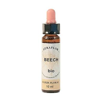 Organic Bach Flowers - Beech 10 ml of floral elixir