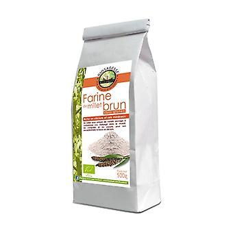 ØKOLOGISK brunt hirsemel 500 g