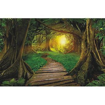 Tapete Wandbild Dschungel in Asien (400x260 c