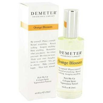 Demeter Orange Blossom Demeter Köln Spray 4 oz (naiset) V728-514656