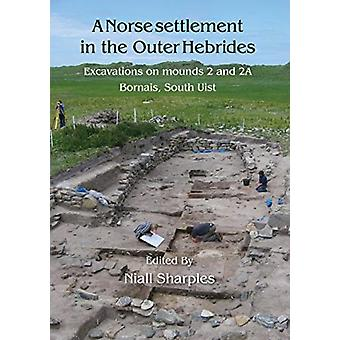 A Norse Settlement in the Outer Hebrides by Niall Sharples