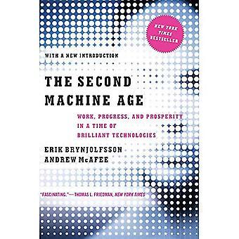 Den anden maskine alder - arbejde, fremskridt og velstand i en tid med strålende teknologier