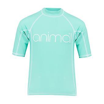 الحيوان مولي مرونة Boardshorts في النعناع الأزرق
