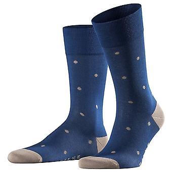 Falke dot sokker-kongeblå