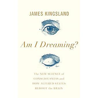 Am I Dreaming by James Kingsland