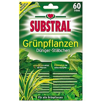 SUBSTRAL® gödningsmedel pinnar för gröna växter, 60 stycken