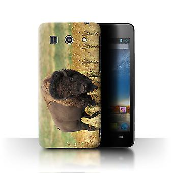 STUFF4 Hülle/Abdeckung für Huawei G520/Bison/Nordamerika Tiere