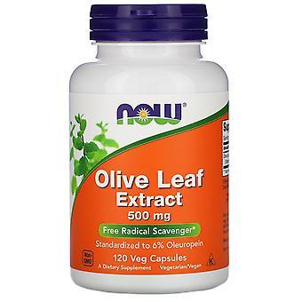 Jetzt Lebensmittel, Olivenblatt-Extrakt, 500 mg, 120 Veg Kapseln