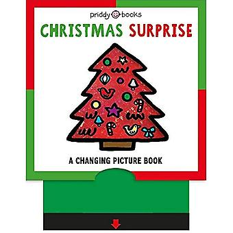 Christmas Surprise (Changinga� Picture Book) [Board book]