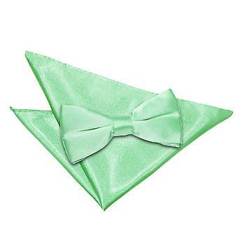 Mint Grün Plain Satin Bow-Tie & Einstecktuch Satz