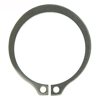 Pentair S16767 Retaining Ring