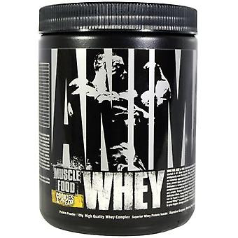 Universal Nutrition Animal Whey 128 g