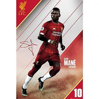 Liverpool Poster Mane 20