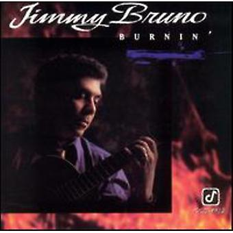Jimmy Bruno - Burnin ' importation USA [CD]
