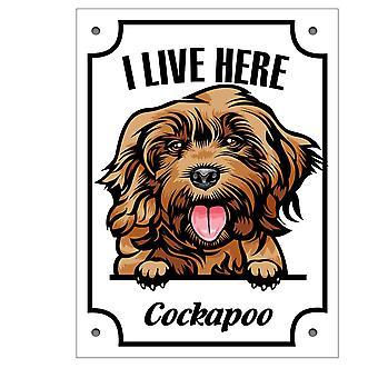 Plåtskylt Cockapoo Kikande hund skylt