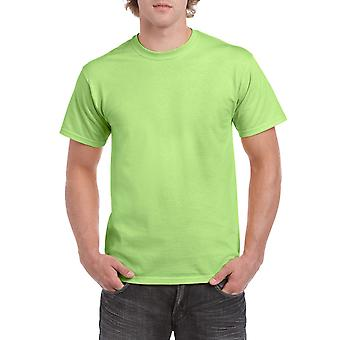 Gildan G5000 Plain Heavy Cotton T Shirt in Mint Green