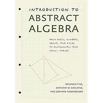 Inleiding tot abstracte algebra: Van ringen, getallen, groepen en velden tot polynomials en Galois-theorie