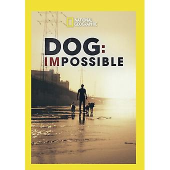 Dog: Impossible [DVD] USA import