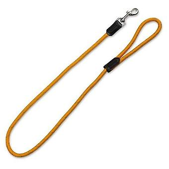 Arquivet Reflective Nylon Puller (Dogs , Collars, Leads and Harnesses , Leads)