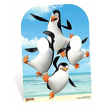 Penguins of Madagascar Child Size Cardboard Cutout / Standee Stand In