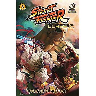 Street Fighter Classic Volume 3