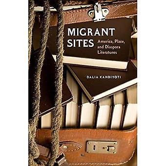 Migrant Sites: America, Place, and Diaspora Literatures