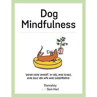 Dog Mindfulness by Dannyboy