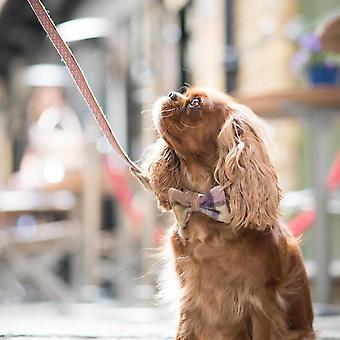 Dog Bowtie - Gargrave Lilac