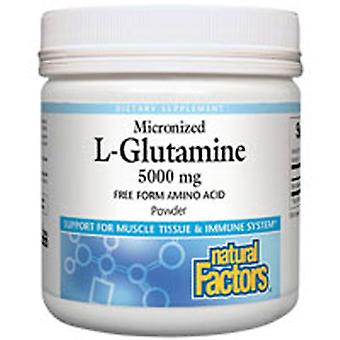 天然因子微粉化L-グルタミン粉末, 5000 mg, 16オンス