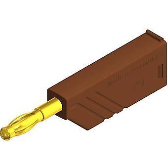 SKS Hirschmann LAS Nielsen WS Au lige klinge plug Plug, straight Pin diameter: 4 mm brun 1 computer(e)