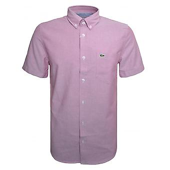 Lacoste мужчин регулярно подходят розовый короткие рукав рубашки