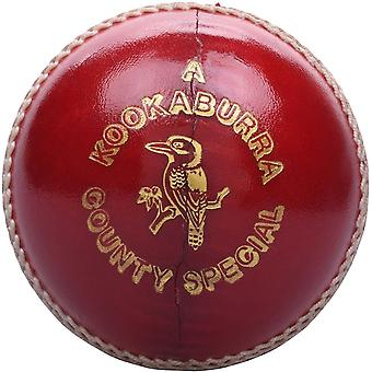 Kookaburra County Special Cricket Ball Erwachsene