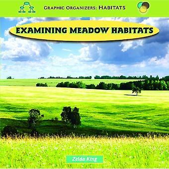 Examining Meadow Habitats (Graphic Organizers: Habitats)