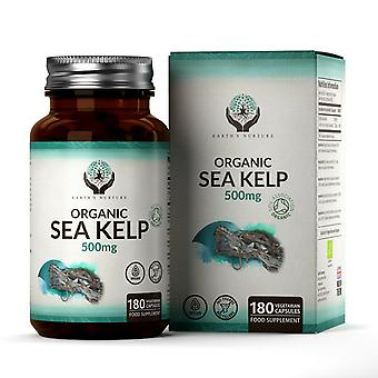 Sea Kelp (500mg) 90 Capsules