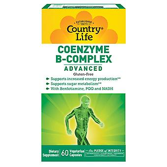 Country Life Coenzyme B Complex, Advanced 60 Vcaps