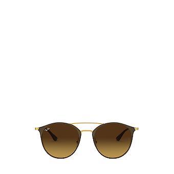 Ray-Ban RB3546 kulta toppi ruskea unisex aurinkolasit