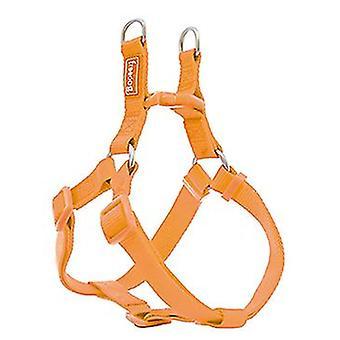 Freedog A-tyypin nailon perus ling oranssi (koirat, kaulukset, johdot ja valjaat, valjaat)