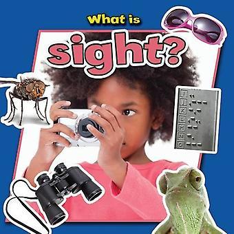 Vad är synen?