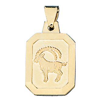 תליון נשים גלגל המזלות סימן מזל גדי 333 זהב זהב זהב מאט גלגל המזלות