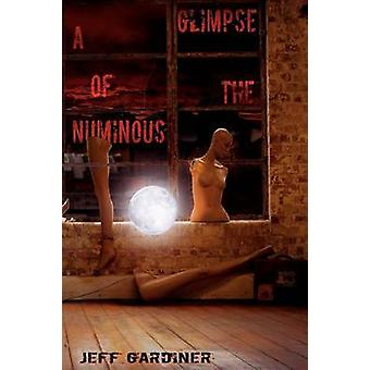 A Glimpse of the Numinous Paperback by Gardiner & Jeff