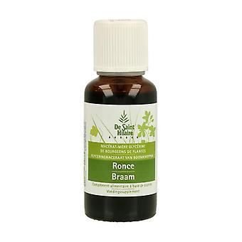 Organic Bramble Macerate 30 ml