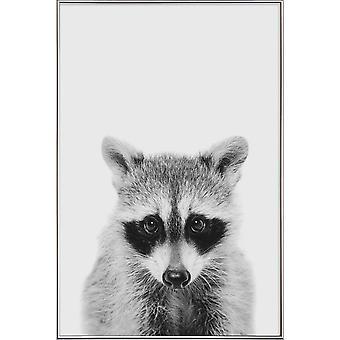 JUNIQE Print - Raccoon Classic - Animaux sauvages poster en noir et blanc