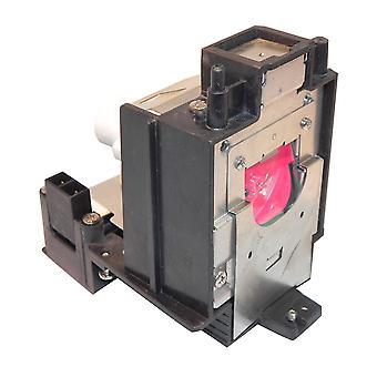 Lampada per proiettore di sostituzione potenza Premium con lampadina Phoenix per AN-D400LP nitida