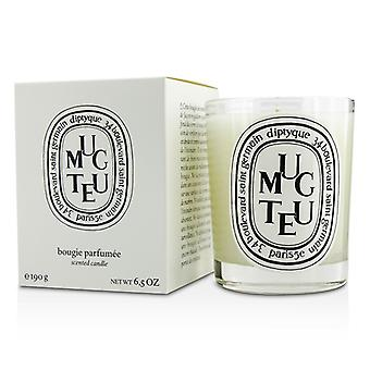 Diptyque Scented Candle - Muguet (Lily of The Villey) 190g/6.5oz