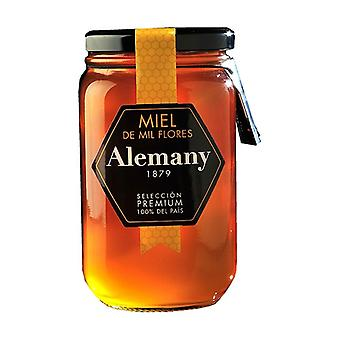 Polyflora honey 980 g