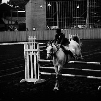 Horse and rider at show jumping event Poster Print