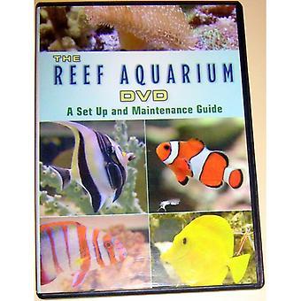 Reef Aquarium TV: A Visual Display of Beautiful Re [DVD] USA import